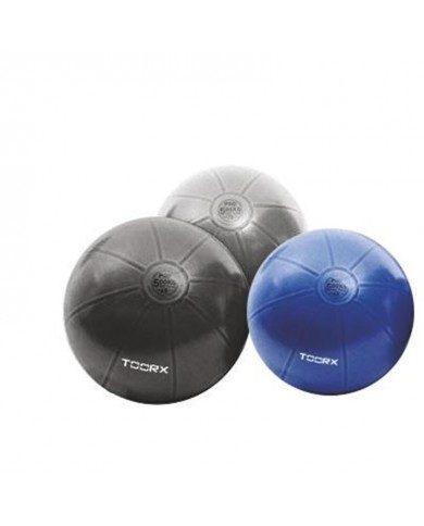Gym Ball Pro Toorx 55cm...